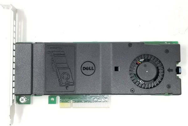 Dell M.2 SSD PCI-E 2x Solid State Storage Adapter Card mit 256GB M.2 SSD Speicher DP/N:023PX6